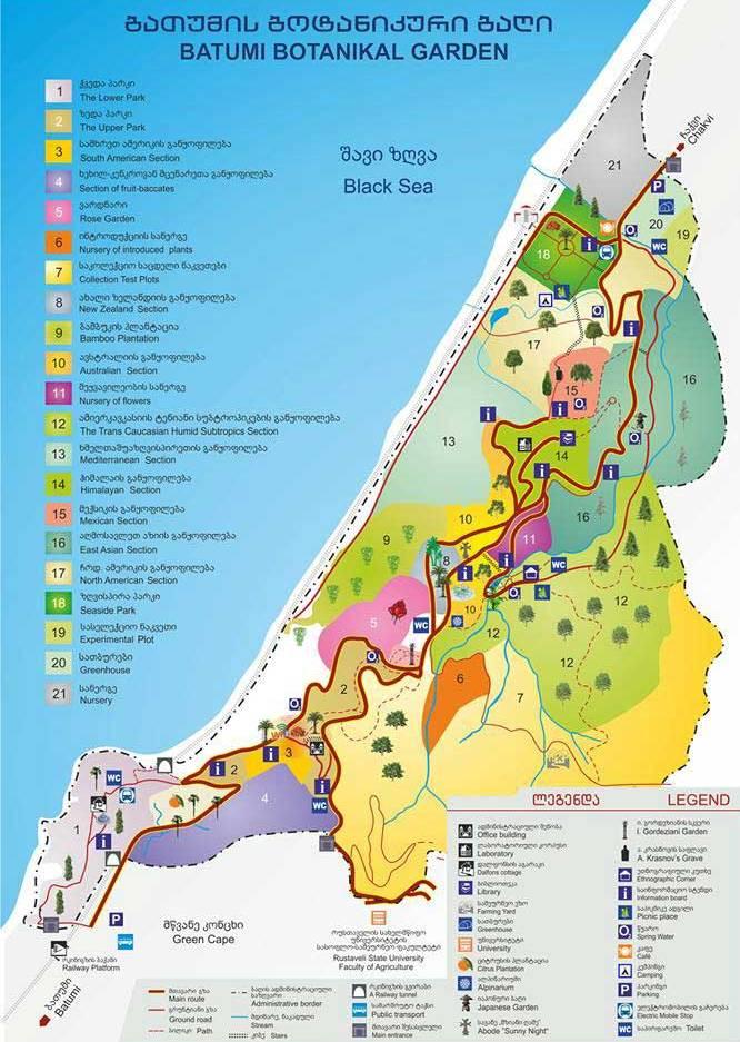 Карта ботанического сада в Батуми, Ботанический сад, Батуми, Грузия