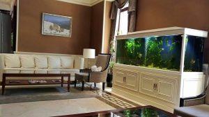 Зона отдыха в отеле Divan Suite, Отель Divan Suites Batumi, Батуми, Грузия