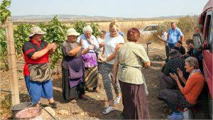 Танцы во время праздника сбора урожая - ртвели, Грузинское вино, Грузия