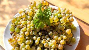 Созревший виноград белых сортов, Грузинское вино, Грузия