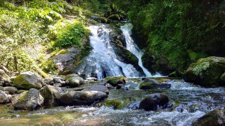 Водопад в парке Кинтриши, Кобулети, Грузия