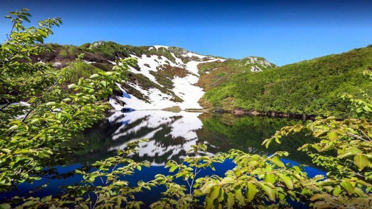 Горы в парке Кинтриши, Кобулети, Грузия