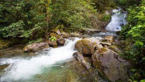 Горные реки парка Кмнтриши, Кобулети, Грузия