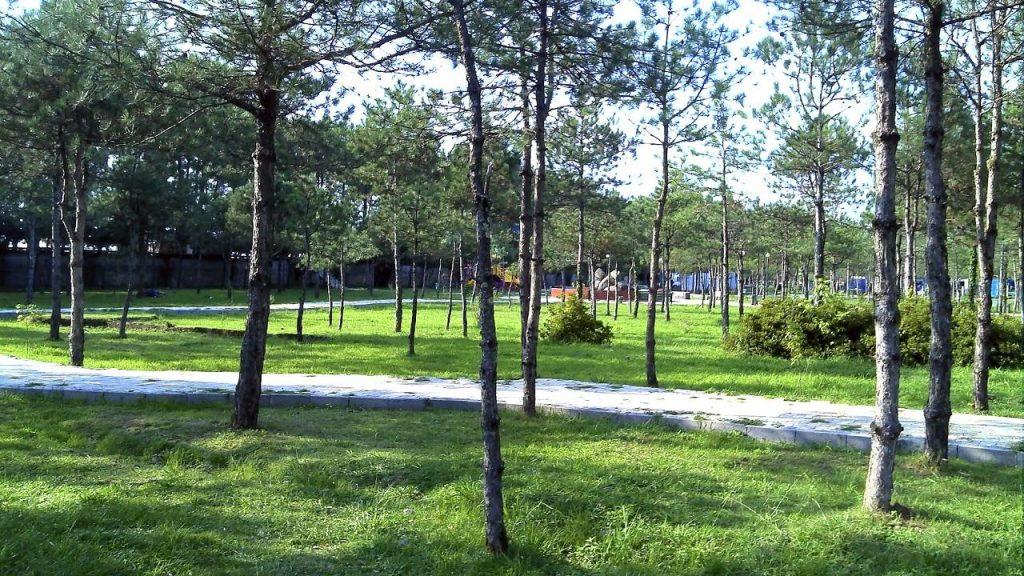 Парковые зоны вдоль пляжа, Кобулети, Грузия