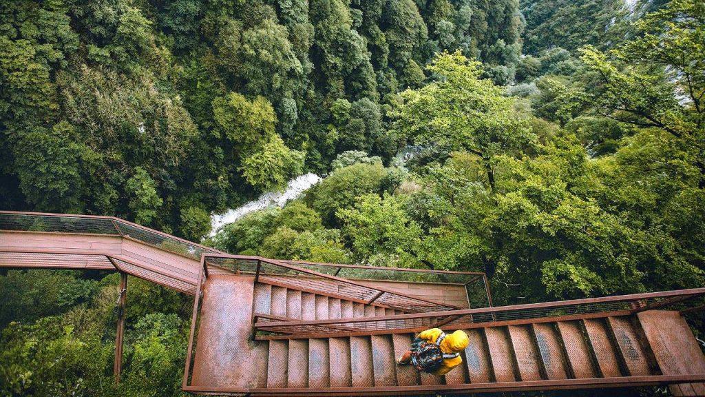 Дорога для пеших прогулок по горам парка Мтирала, Национальный парк Мтирала, Батуми, Грузия