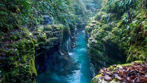 Река, протекающая в коньоне, Национальный парк Мтирала, Батуми, Грузия
