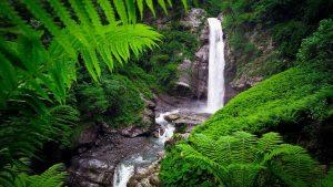 Водопад Цаблнари, Национальный парк Мтирала, Батуми, Грузия
