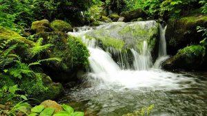 Водопады в национальном парке, Национальный парк Мтирала, Батуми, Грузия