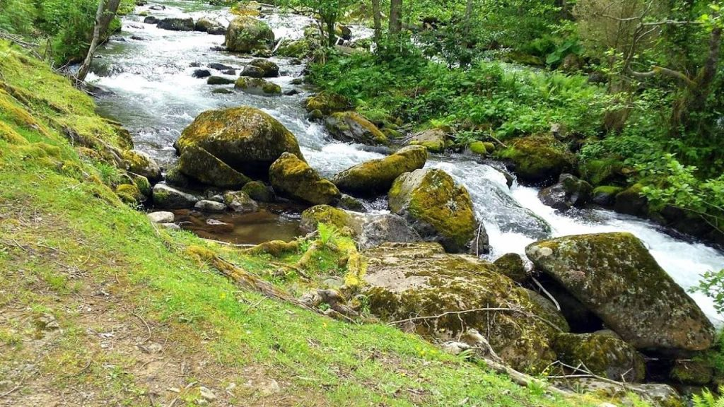 Горные реки на территории парка, Национальный парк Мтирала, Батуми, Грузия