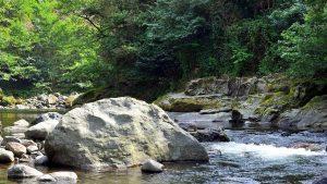 , Национальный парк Мтирала, Батуми, Грузия